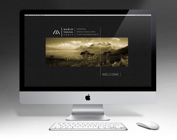 Marlo-Young-Group-Website-Design-by-Marcel-Buerkle-324647